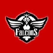 Frb. esportsforening Falcons